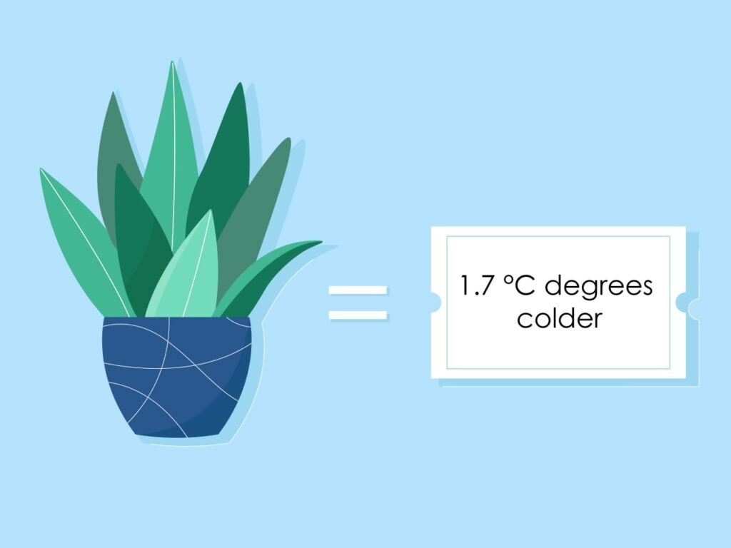 Illustrating that you can stay cool during the night by lowering the temperature using plants